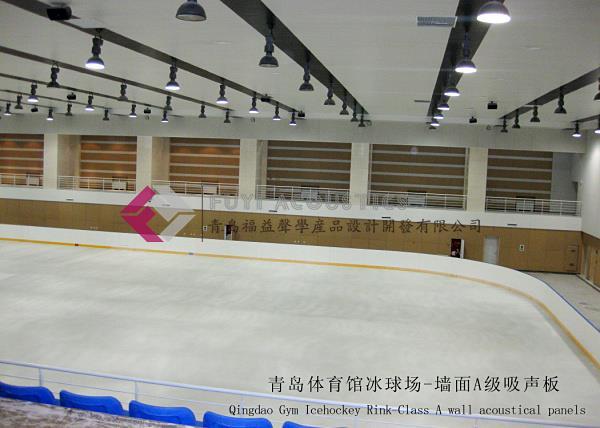 青岛体育馆冰球馆